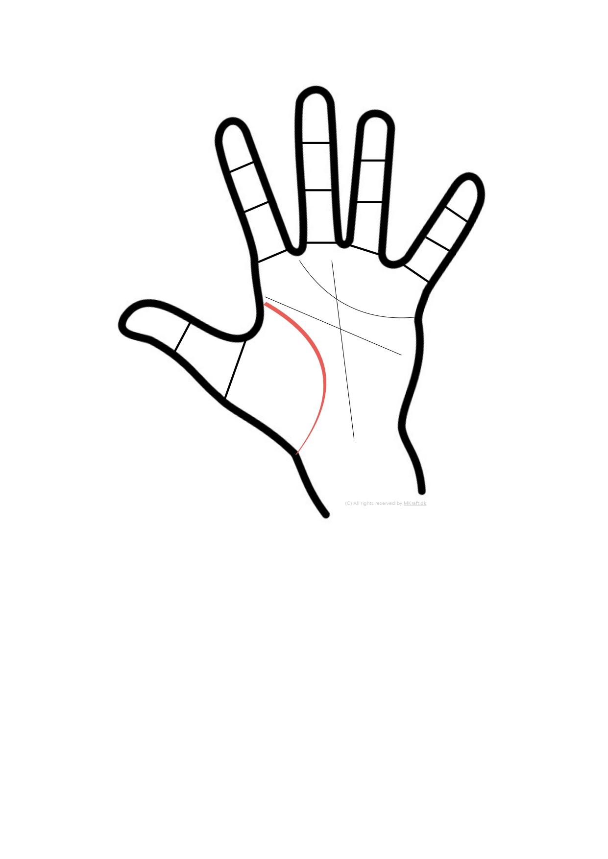 Workshop i håndlæsning